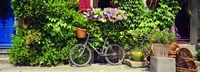 """Bicycle In Front Of Wall Covered With Plants And Flowers, Rochefort En Terre, France by Panoramic Images - 27"""" x 9"""""""