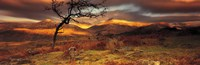 Snowdonia National Park Wales United Kingdom