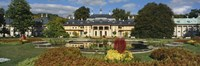 """Formal garden in front of a castle, Pillnitz Castle, Dresden, Germany by Panoramic Images - 27"""" x 9"""""""