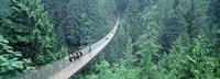 "Capilano Bridge, Suspended Walk, Vancouver, British Columbia, Canada by Panoramic Images - 27"" x 9"""