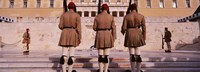 """Parliament, Athens, Greece by Panoramic Images - 27"""" x 9"""""""
