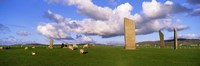 """Stones Of Stenness, Scotland, United Kingdom by Panoramic Images - 27"""" x 9"""""""