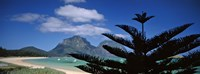 """Panoramic View Of A Coastline, Lord Howe Island, Australia by Panoramic Images - 27"""" x 9"""""""