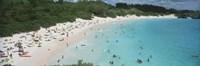"27"" x 9"" Bermuda Pictures"
