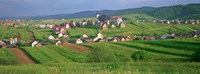 High angle view of houses in a field, Tatra Mountains, Slovakia Fine Art Print