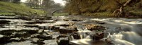 """Arch Bridge Over A River, Stainforth Force, River Ribble, North Yorkshire, England, United Kingdom by Panoramic Images - 27"""" x 9"""" - $28.99"""