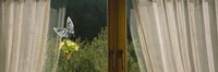 """Close-Up Of Flowers And A Butterfly Painted On A Window, Germany by Panoramic Images - 27"""" x 9"""""""