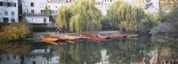 """Reflection Of Buildings And Trees On Water, Neckar River, Tuebingen, Baden-Wurttemberg, Germany by Panoramic Images - 27"""" x 9"""""""