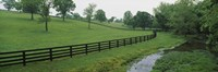 Fence in a field, Woodford County, Kentucky, USA Fine Art Print