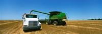 Combine in a wheat field, Kearney County, Nebraska, USA Fine Art Print