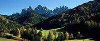 "Trees on a landscape, Dolomites, Funes Valley, Le Odle, Santa Maddalena, Tyrol, Italy by Panoramic Images - 27"" x 9"""