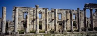 Ruins at Cardo Maximus Apamea Syria