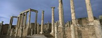 Columns of buildings in an old ruined Roman city, Leptis Magna, Libya Fine Art Print