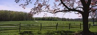 "Wooden fence in a farm, Knox Farm State Park, East Aurora, New York State, USA by Panoramic Images - 27"" x 9"""
