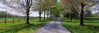 "Road passing through a farm, Knox Farm State Park, East Aurora, New York State, USA by Panoramic Images - 27"" x 9"""