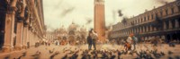 "Flock of pigeons flying, St. Mark's Square, Venice, Italy by Panoramic Images - 27"" x 9"""