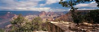 "Rock formations in a national park, Mather Point, Grand Canyon National Park, Arizona, USA by Panoramic Images - 27"" x 9"""