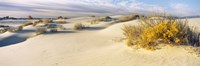 """White Sands National Monument, New Mexico by Panoramic Images - 27"""" x 9"""""""