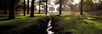 """Stream passing through a park, Richmond Park, London, England by Panoramic Images - 27"""" x 9"""""""