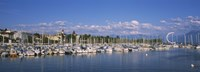 Boats moored at a harbor, Lake Geneva, Lausanne, Switzerland Fine Art Print