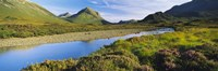 "River flowing on a landscape, River Sligachan, Glen Sligachan, Isle of Skye, Scotland by Panoramic Images - 27"" x 9"""