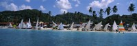 """Sailboats on the beach, Grenada Sailing Festival, Grand Anse Beach, Grenada by Panoramic Images - 27"""" x 9"""""""