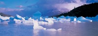 """Icebergs floating on water, Lago Grey, Patagonia, Chile by Panoramic Images - 27"""" x 9"""""""