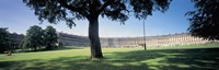 "Tree in front of a building, Royal Crescent, Bath, England by Panoramic Images - 27"" x 9"" - $28.99"