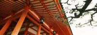 Low angle view of a shrine, Heian Jingu Shrine, Kyoto, Kyoto Prefecture, Kinki Region, Honshu, Japan Fine Art Print