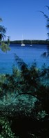 "Sailboats in the ocean, Kingdom of Tonga, Vava'u Group of Islands, South Pacific by Panoramic Images - 9"" x 27"" - $28.99"