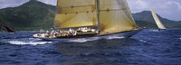 "Yacht racing in the sea, Antigua, Antigua and Barbuda by Panoramic Images - 27"" x 10"""