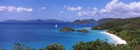 """Trees on the coast, Trunk Bay, Virgin Islands National Park, St. John, US Virgin Islands by Panoramic Images - 27"""" x 9"""""""
