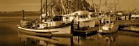"Fishing boats in the sea, Morro Bay, San Luis Obispo County, California, USA by Panoramic Images - 27"" x 9"" - $28.99"