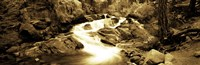 """Stream flowing through rocks, Lee Vining Creek, Lee Vining, Mono County, California, USA by Panoramic Images - 27"""" x 9"""""""