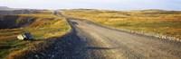 """Gravel road passing through a landscape, Cape Bonavista, Newfoundland, Newfoundland and Labrador, Canada by Panoramic Images - 27"""" x 9"""", FulcrumGallery.com brand"""
