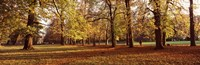 """Ludwigsburg Park in autumn, Ludwigsburg, Baden-Wurttemberg, Germany by Panoramic Images - 27"""" x 9"""""""