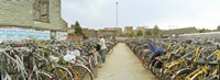 """Bicycles parked in the parking lot of a railway station, Gent-Sint-Pieters, Ghent, East Flanders, Flemish Region, Belgium by Panoramic Images - 27"""" x 9"""""""