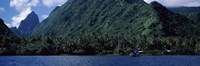 """Trees on the coast, Tahiti, French Polynesia by Panoramic Images - 27"""" x 9"""""""