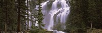 """Waterfall in a forest, Banff, Alberta, Canada by Panoramic Images - 27"""" x 9"""", FulcrumGallery.com brand"""