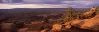 "Canyonlands National Park, San Juan County, Utah by Panoramic Images - 27"" x 9"""