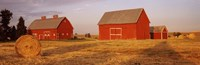"""Red barns in a farm, Palouse, Whitman County, Washington State, USA by Panoramic Images - 27"""" x 9"""""""