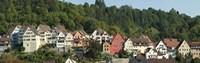Buildings in a city, Horb am Neckar, Northern Black Forest Region, Baden-Wurttemberg, Germany Fine Art Print