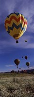 "Hot air balloons rising, Hot Air Balloon Rodeo, Steamboat Springs, Colorado by Panoramic Images - 9"" x 27"""