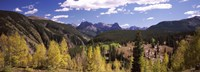 """Aspen trees with mountains in the background, Colorado, USA by Panoramic Images - 27"""" x 9"""""""