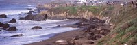 """Beach in San Luis Obispo County, California by Panoramic Images - 27"""" x 9"""""""