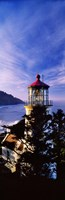 """Lighthouse at a coast, Heceta Head Lighthouse, Heceta Head, Lane County, Oregon (vertical) by Panoramic Images - 9"""" x 27"""""""