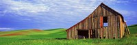 """Dilapidated barn in a farm, Palouse, Whitman County, Washington State, USA by Panoramic Images - 27"""" x 9"""""""