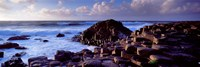Rock formations on the coast, Giants Causeway, County Antrim, Northern Ireland Fine Art Print