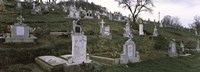 """Tombstone in a cemetery, Saxon Church, Biertan, Transylvania, Mures County, Romania by Panoramic Images - 27"""" x 9"""""""