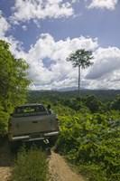 """Truck a dirt road, Malao, Big Bay Highway, Espiritu Santo, Vanuatu by Panoramic Images - 9"""" x 27"""" - $28.99"""